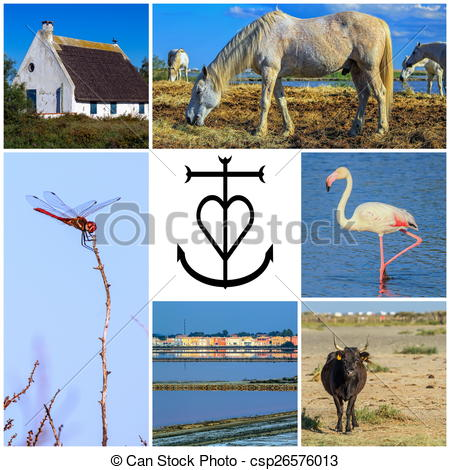 Clipart of Collage of Camargue photos, France.