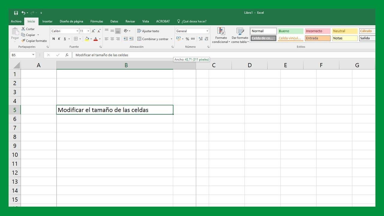 Excel Modificar Tamaño De Celdas. Aggiusta La Cella Al.