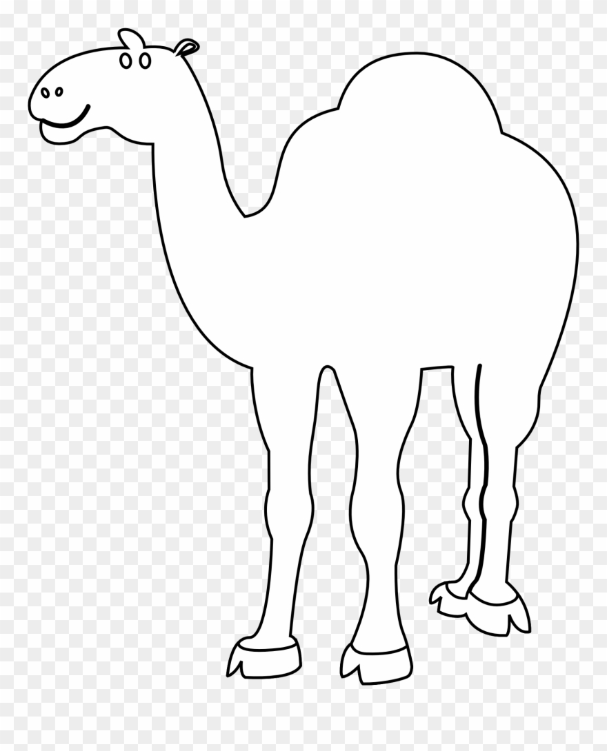 Camel Clipart Coloring.