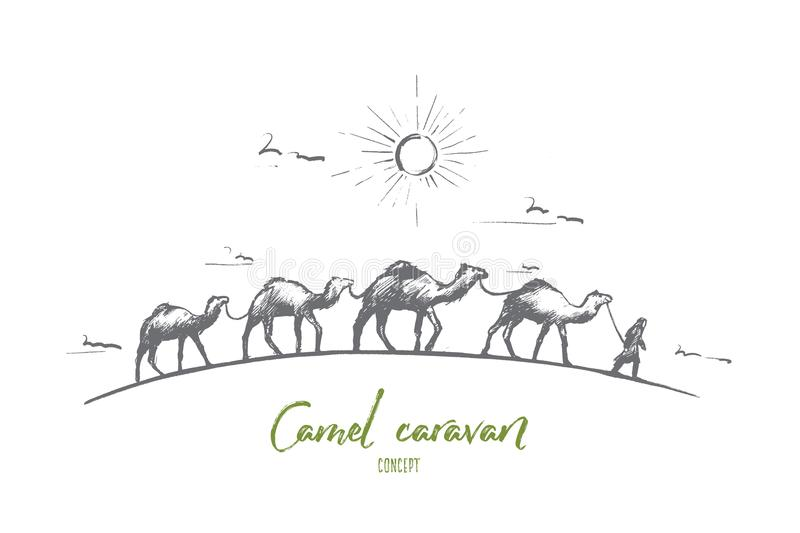 Camel Caravan Stock Illustrations.