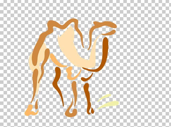 Camel Dromedary Drawing Photography PNG, Clipart, Art, Camel, Camel.