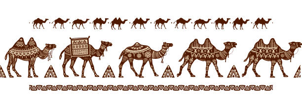 Best Caravan Camel Illustrations, Royalty.