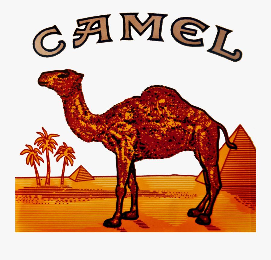 Camel Logo Clipart Camel Cigarette Logo.