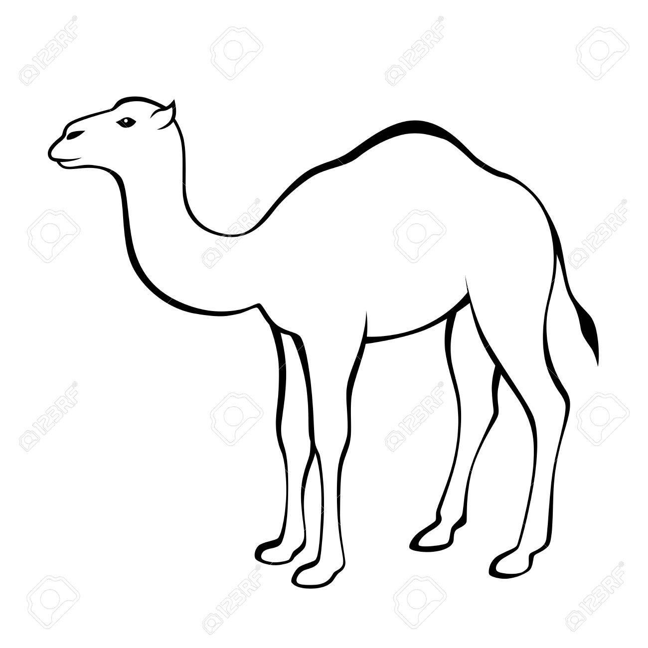 Camel black white isolated illustration.