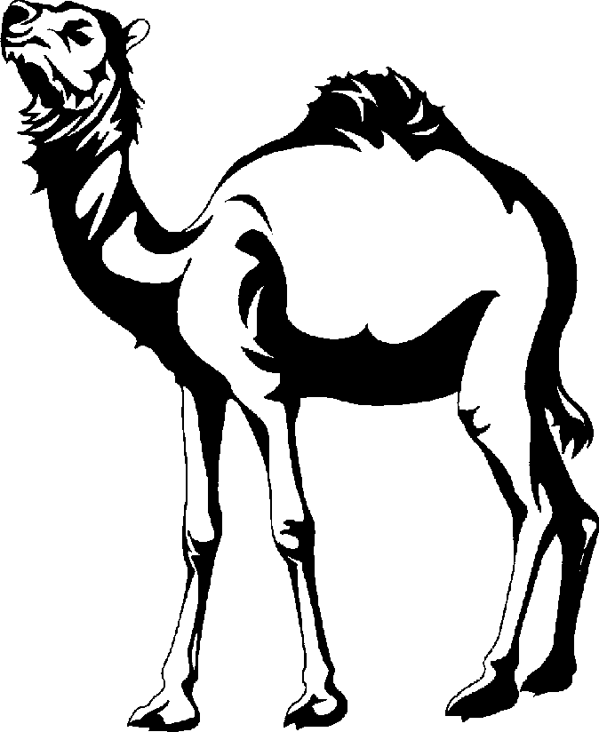 Camel clipart black and white free images 4.