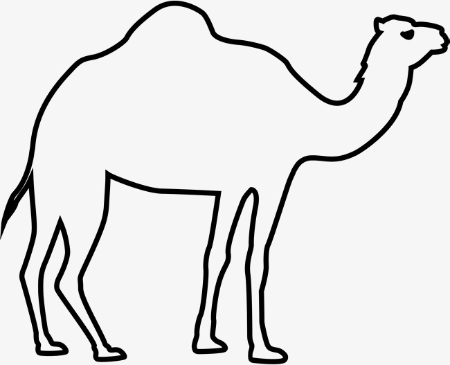 Camel clipart black and white 6 » Clipart Station.