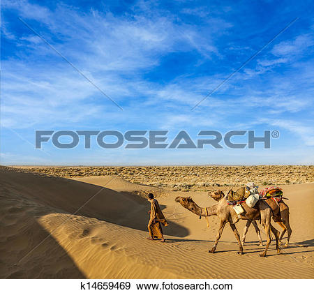 Camel driver Images and Stock Photos. 444 camel driver photography.