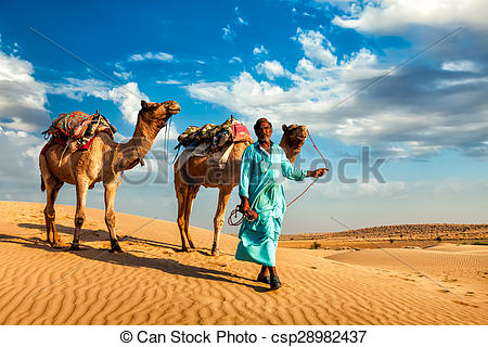 Stock Photos of Cameleer camel driver with camels in dunes of Thar.