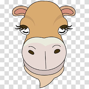 Camel Face PNG clipart images free download.