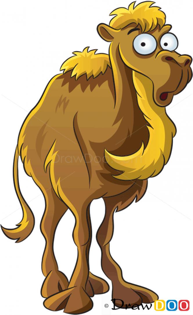 How to Draw Camel, Farm Animals.