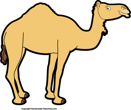 Camel clip art cartoon.