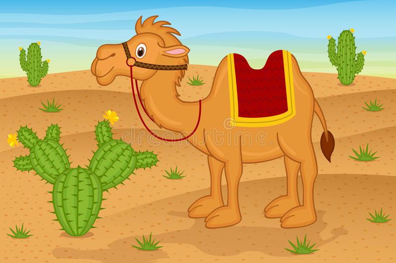 Camel Desert Stock Illustrations.