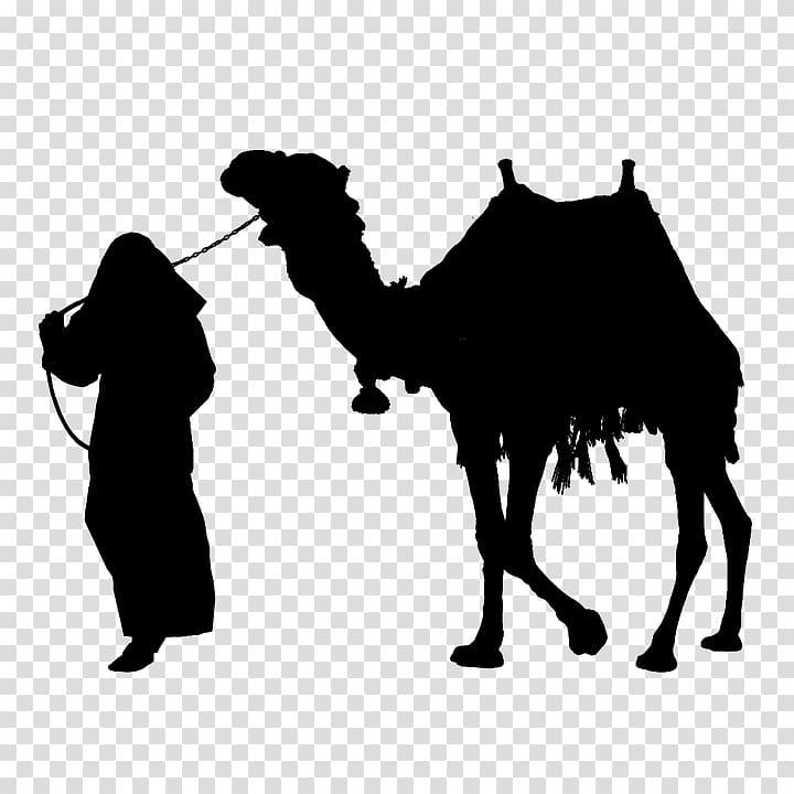 Camel Silhouette , camel transparent background PNG clipart.