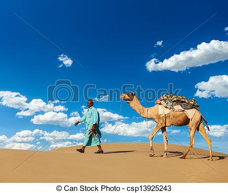 Stock Photo of Cameleer (camel driver) with camels in Rajasthan.