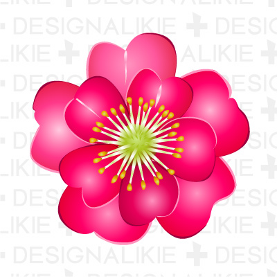 Illustration camellia|Pictures of clipart and graphic design and.