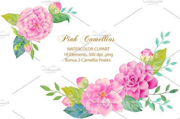 Wedding Pink Camellia Clipart ~ Illustrations on Creative Market.