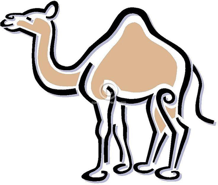 1000+ images about Camels ~ Camels ~ Camels on Pinterest.