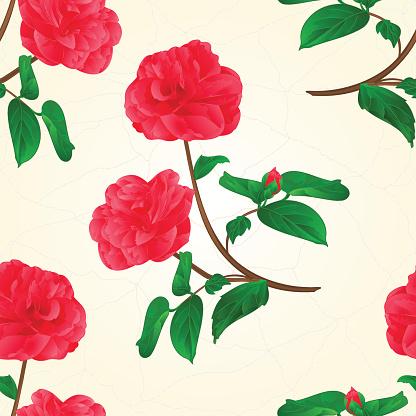Camellia Flower Clip Art, Vector Images & Illustrations.