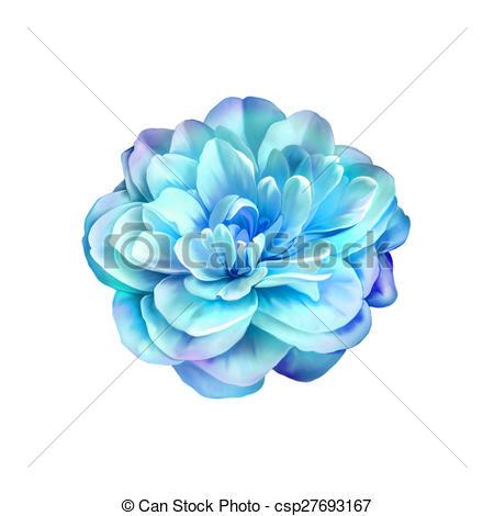 Aroma background beautiful beauty bloom blossom blue bud.