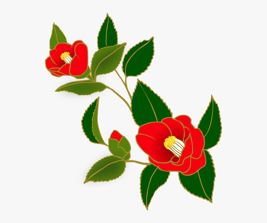 Transparent Japanese Flowers Png.