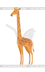 Giraffa Camelopardalis Cartoon Animal.