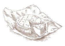 Camembert Stock Illustrations.
