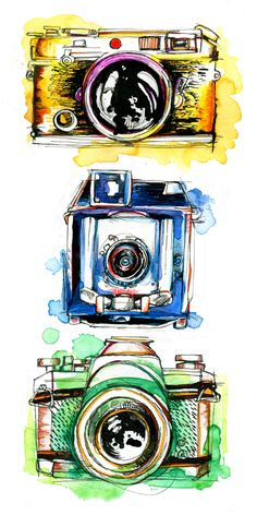 Vintage Cameras. 10 Handpainted clipart, wedding elements, flowers.