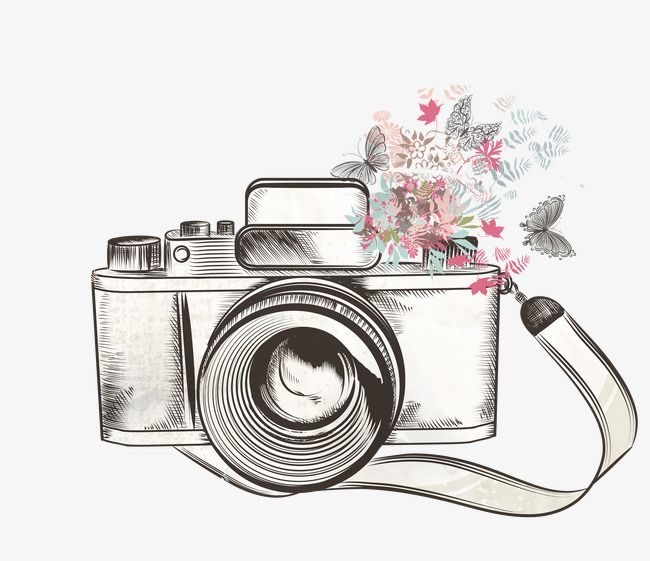 Camera Vector, Fineragdoll, Material, Free Buckle PNG and Vector.