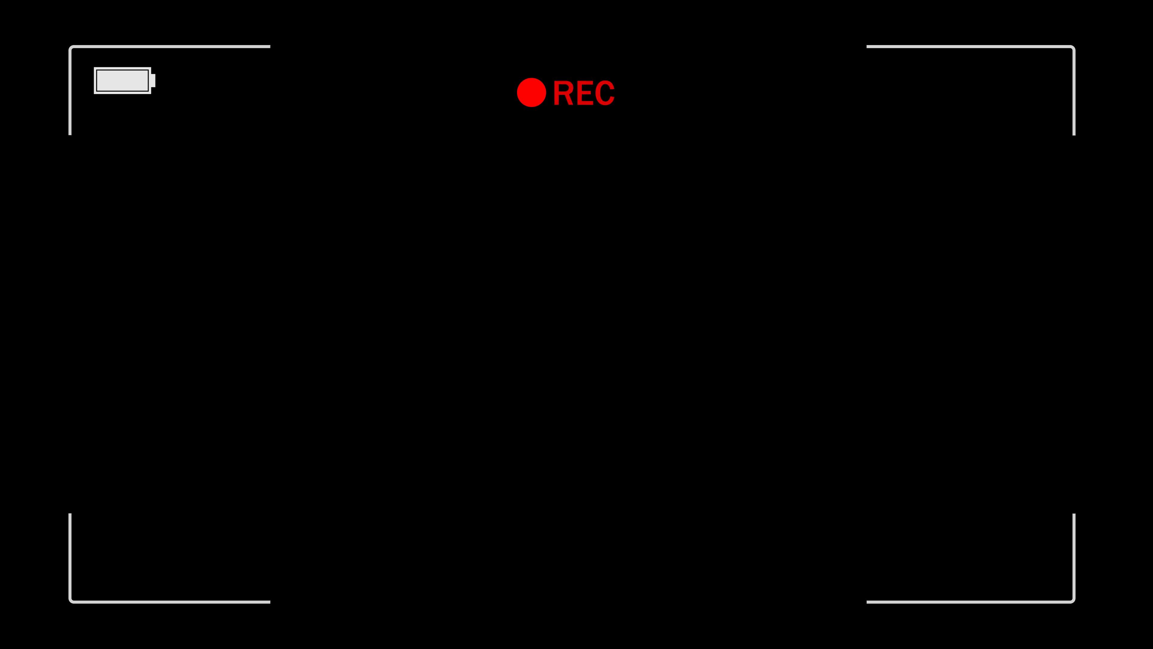Video Camera Viewfinder (digital overlay display).