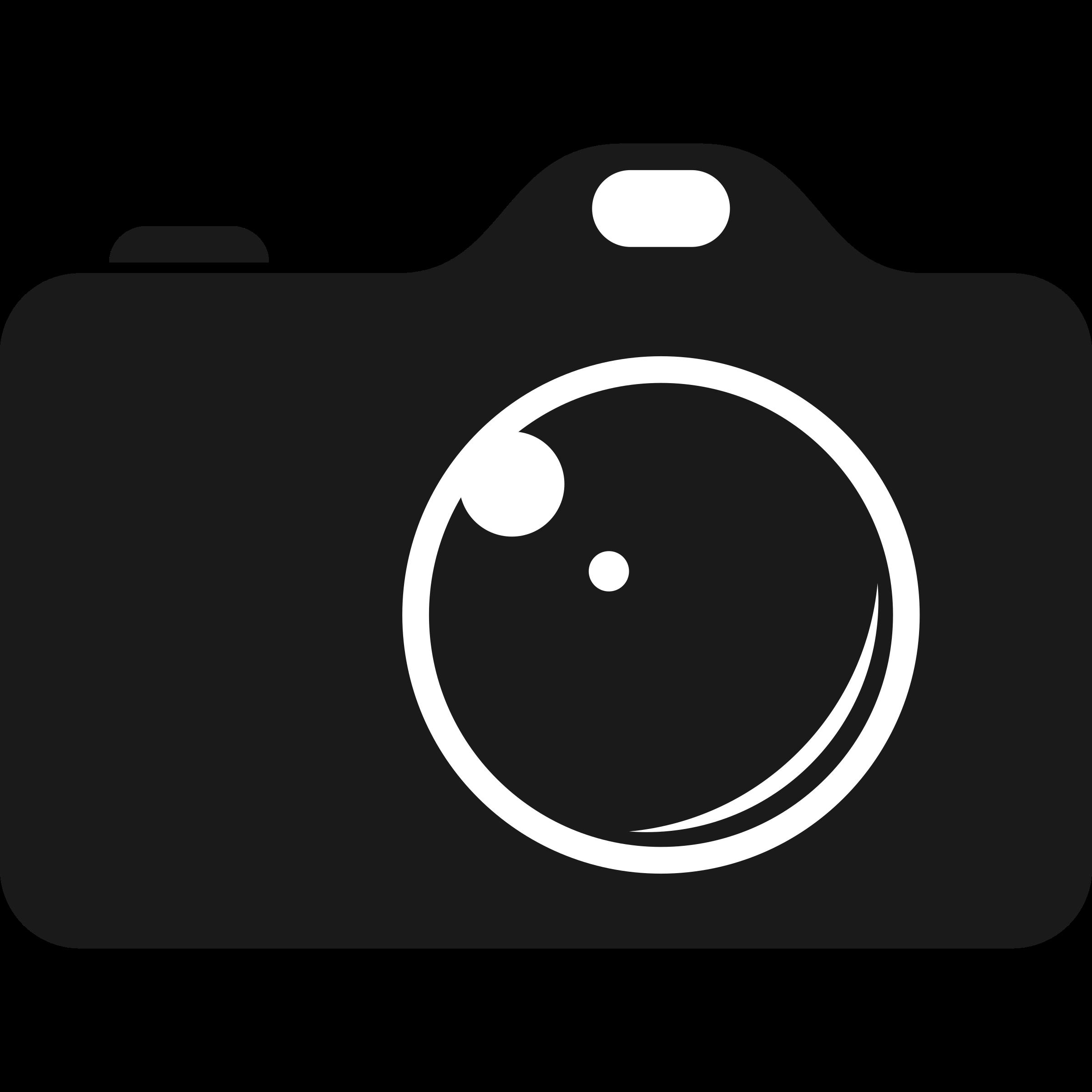 Camera Computer Icons Clip art.