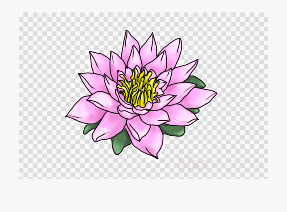 Camera With Flowers Clipart , Transparent Cartoon, Free.
