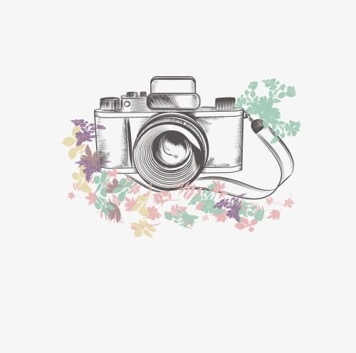 Camera PNG, Clipart, Camera Clipart, Flowers, Hand, Hand.
