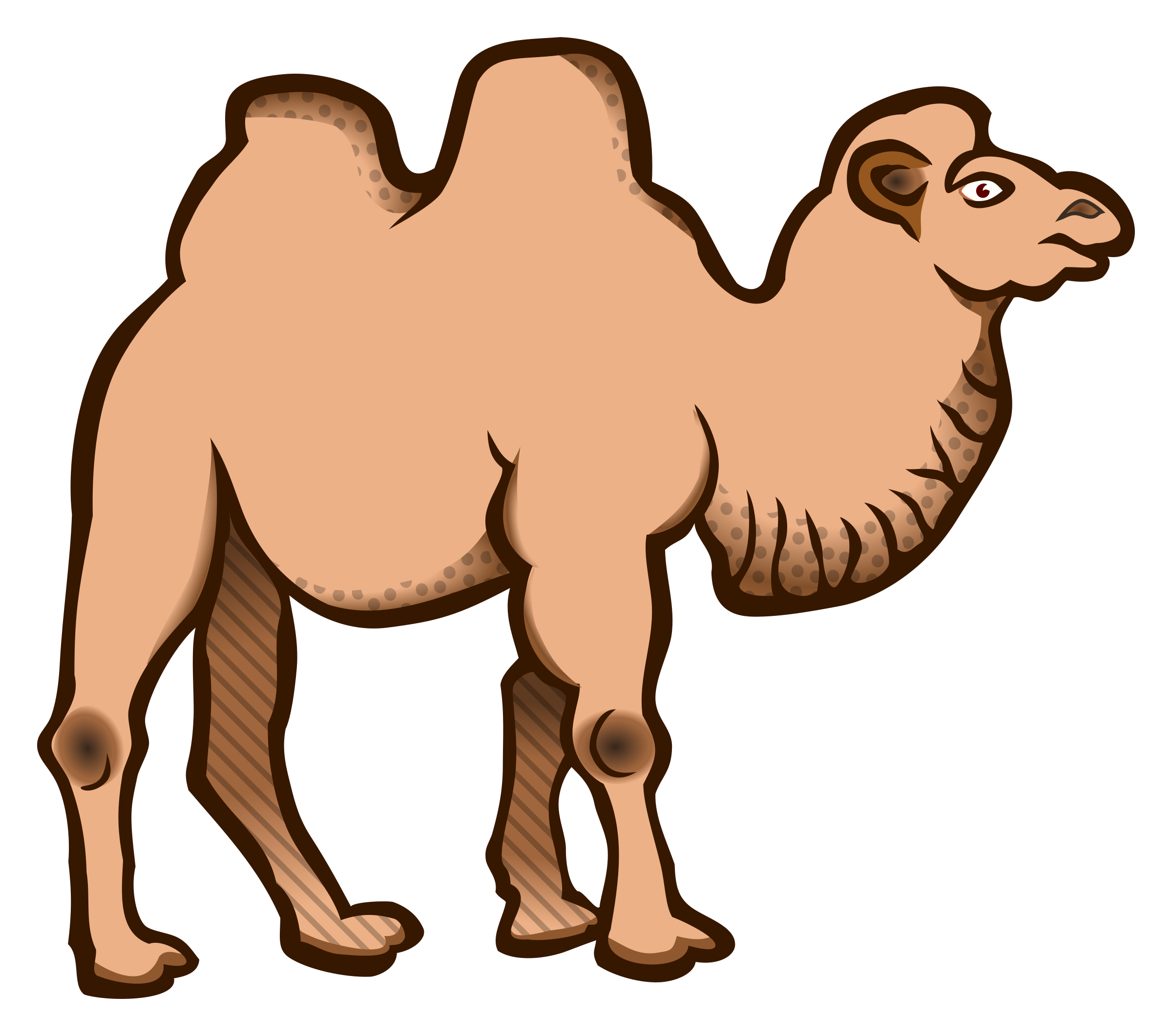 Camel clipart camil, Camel camil Transparent FREE for.