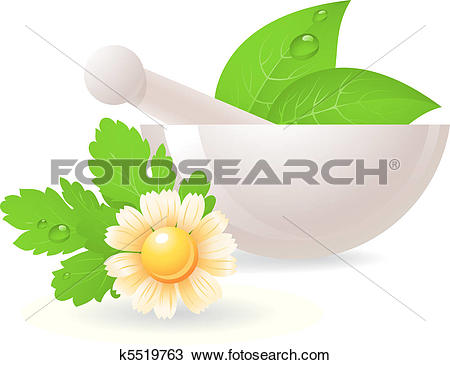 Clipart of Mortar with herbs and camomile. k5519763.
