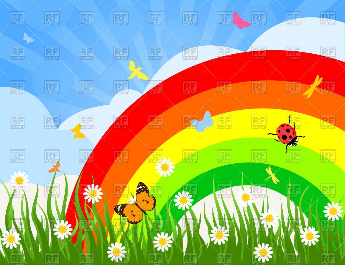 Rainbow on camomile field Vector Image #79959.