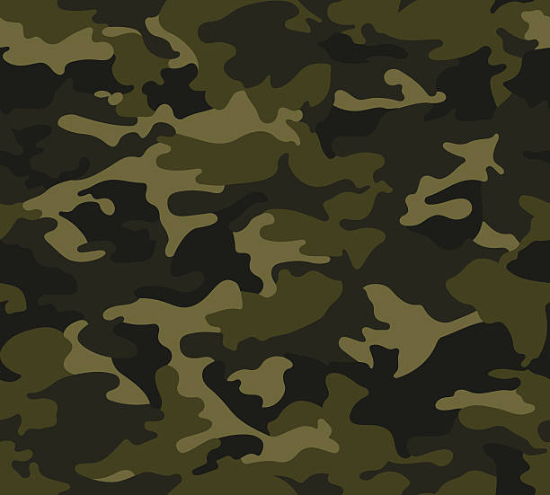 Best Camouflage Illustrations, Royalty.