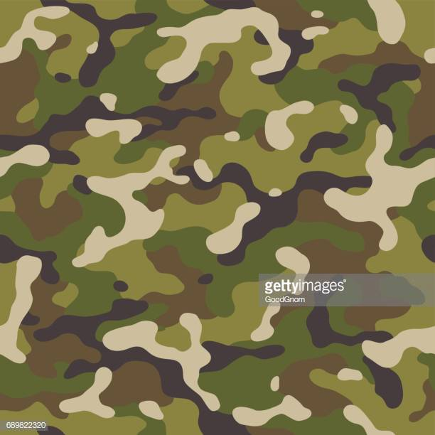 60 Top Camouflage Stock Illustrations, Clip art, Cartoons, & Icons.