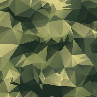 Camouflage Vectors, Photos and PSD files.