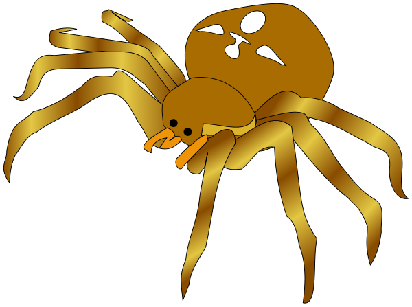 Spiders clipart png.
