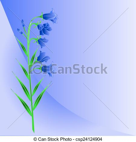 Vector Clipart of Bluebell campanula meadow spring flower blue.