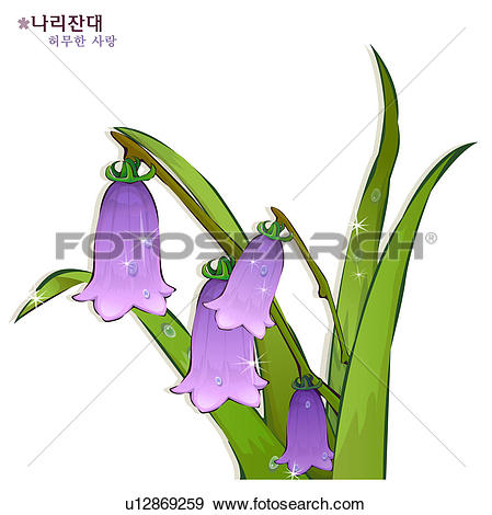 Stock Illustration of flowers, nature, plants, campanulaceae.