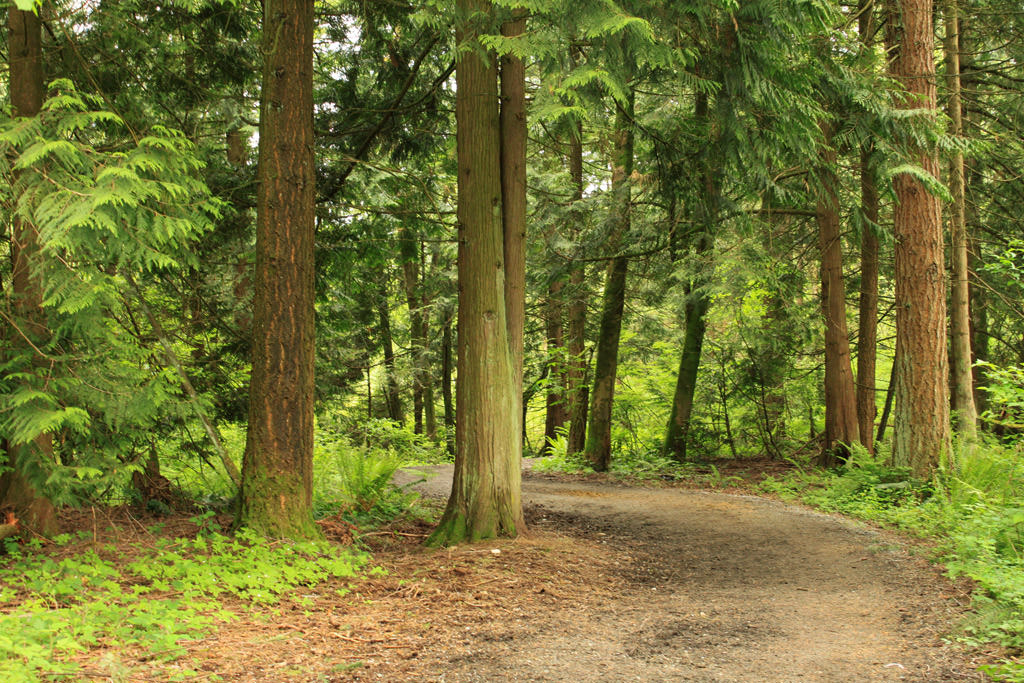Campbell Valley Regional Park in Langley.