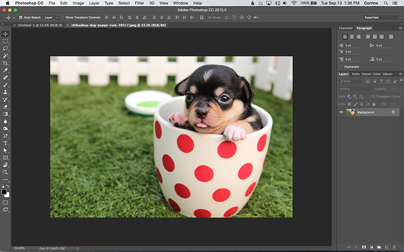 How to Turn a Photo into a Vector Line Art with Illustrator.