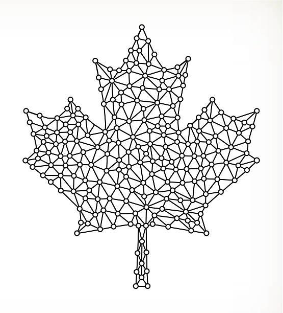 Black And White Maple Leaf Leaf Canadian Flag Illustrations, Royalty.