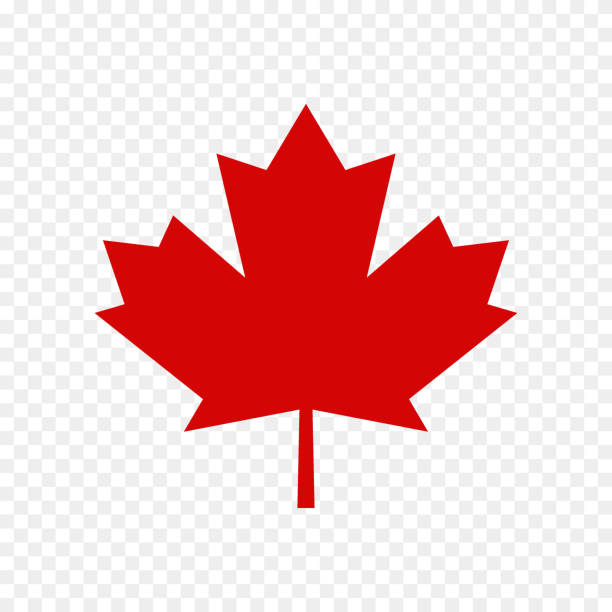 Best Canadian Flag Illustrations, Royalty.