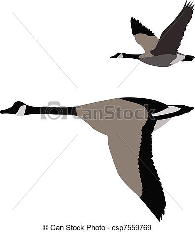 Goose Clip Art and Stock Illustrations. 3,527 Goose EPS.