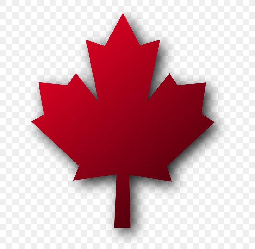 Toronto Pearson International Airport Maple Leaf, Toronto.