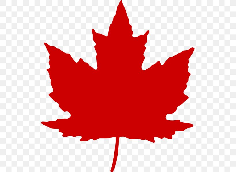 Maple Leaf Canada Clip Art, PNG, 533x599px, Maple Leaf.