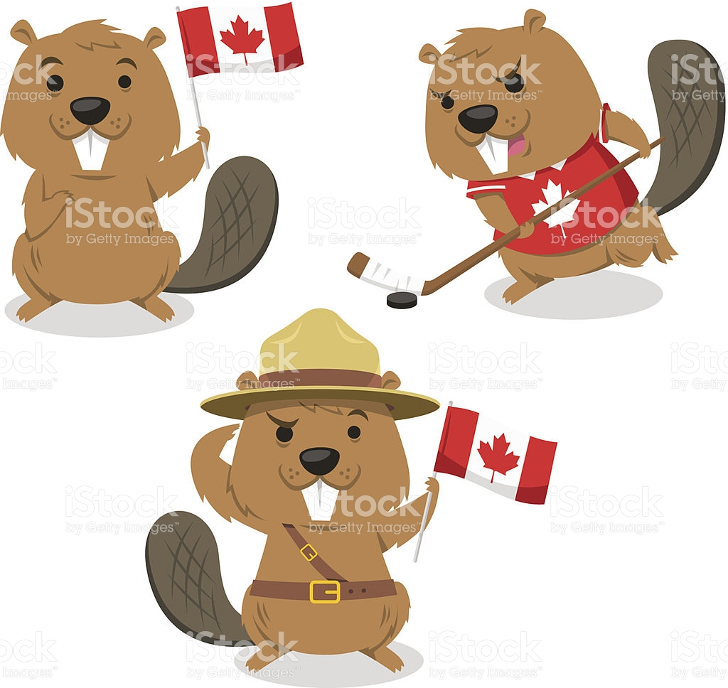 Canadian beaver clipart 7 » Clipart Station.