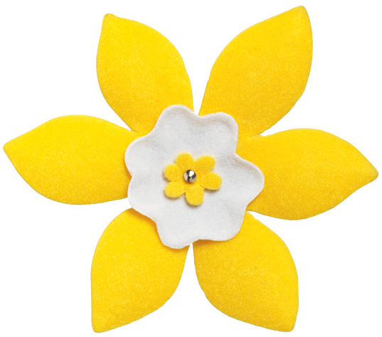 April is Daffodil Month.